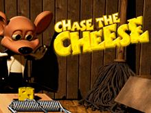 Преследуй Сыр в Вулкан Вип